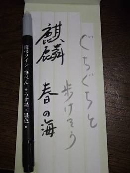 P2057578.JPG